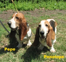 PENELOPE AND PEPE